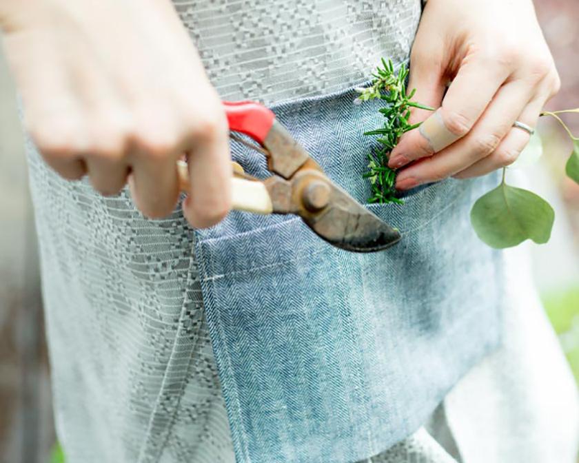 心を癒す草花と虫と庭しごと